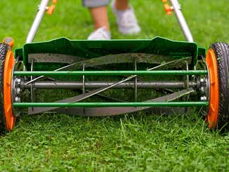 Best Manual Push Mowers (and here's why)